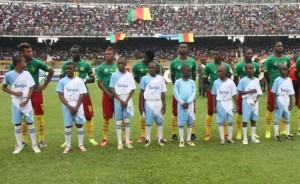 lions indomptables cameroun-2014
